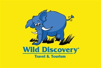 Wild Discovery Travel and Tourism