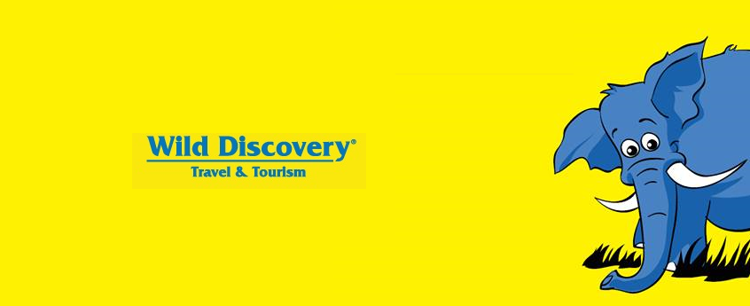 wild discovery travel agency